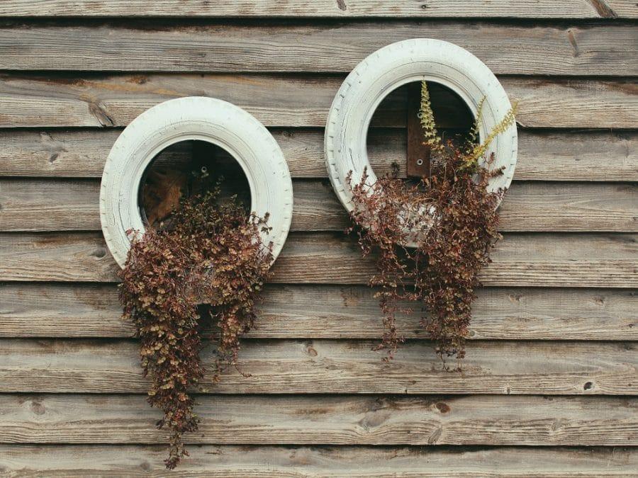 Vecchi pneumatici riciclati come vasi per piante