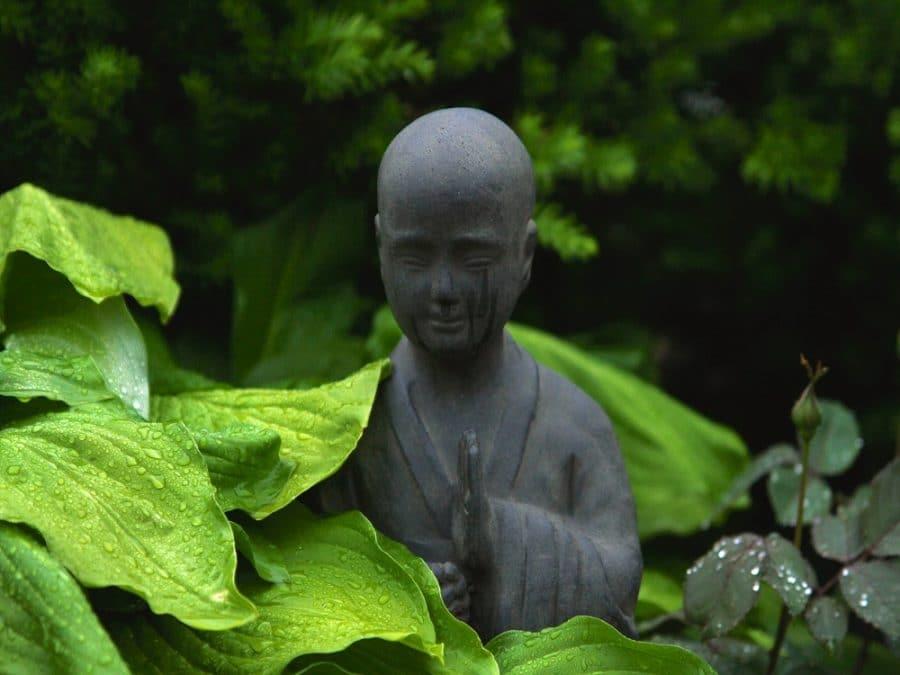 Statua di Buddha immersa nella natura