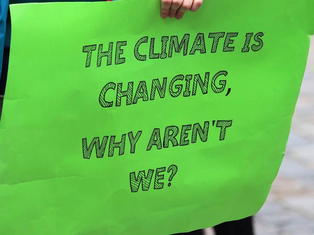 Cartello Fridays for Future: Il clima cambia, perché non lo facciamo anche noi?