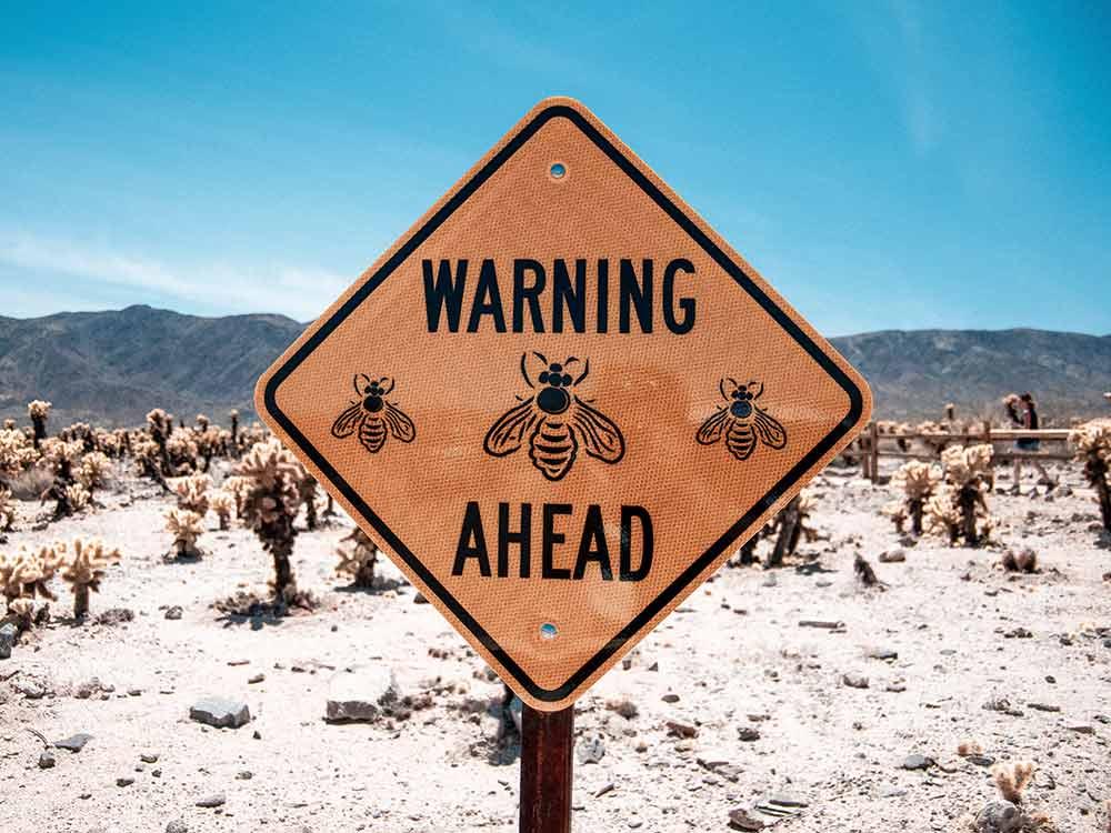 Cartello pericolo api