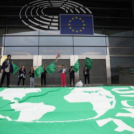 occupazione parlamento europeo fridays for future