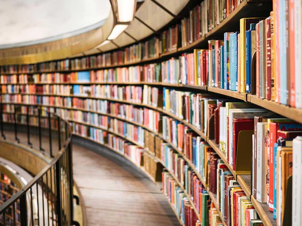 Libreria con scaffali pieni di libri