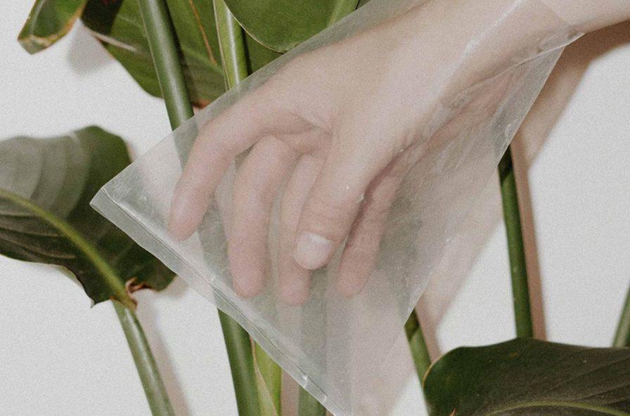 Compostabile e biodegradabile significato