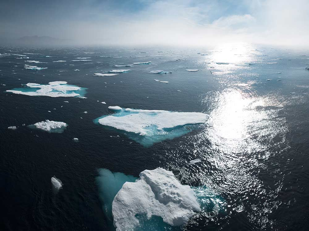 Cambiamenti climatici emergenza