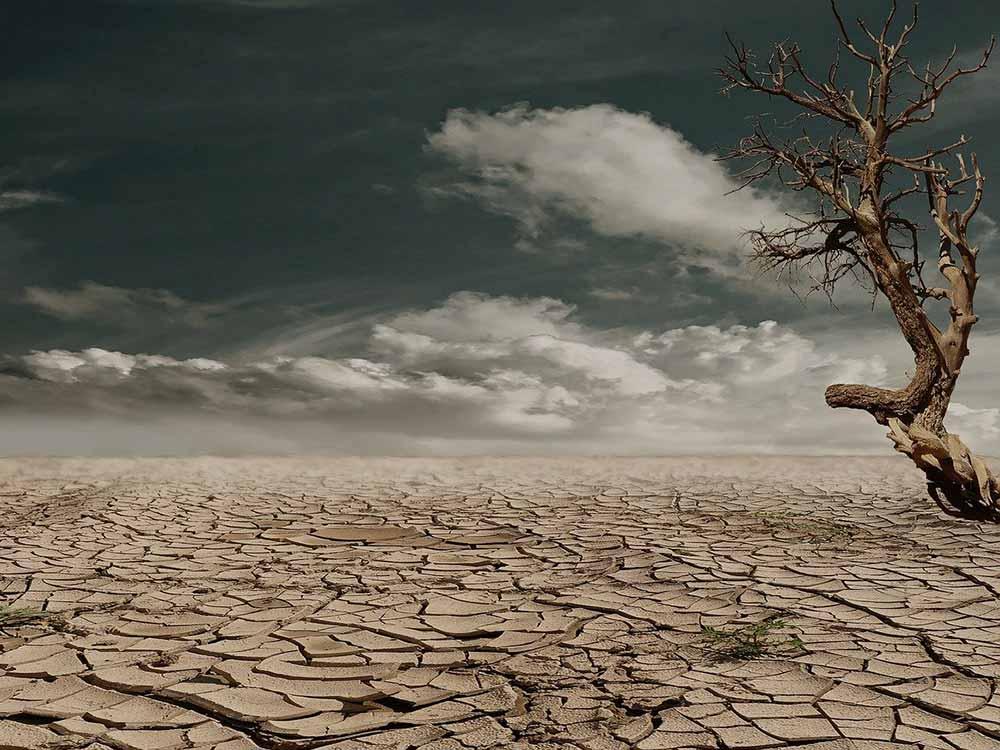 Siccità e cambiamenti climatici