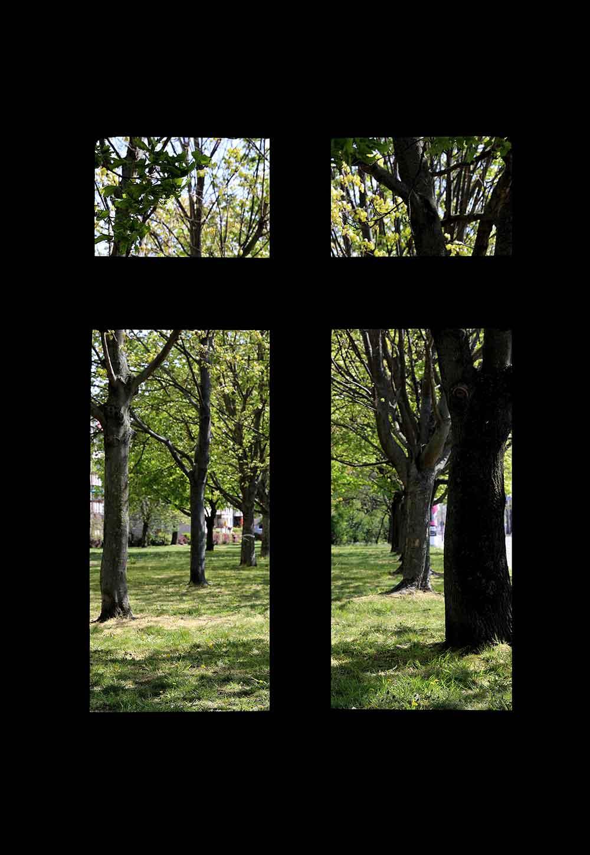 Il mondo visto da una finestra