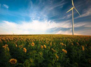 Cos'è la Green economy
