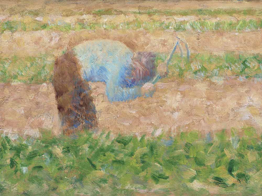 lavoratore nei campi