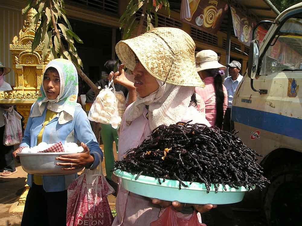 insetti al mercato