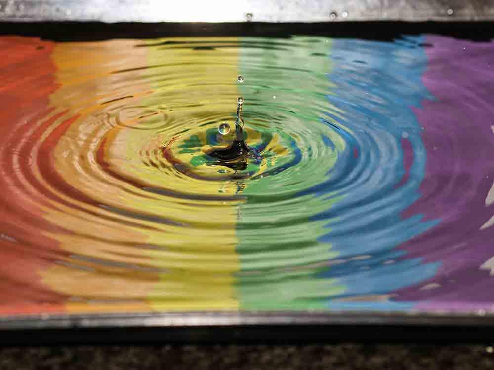 famiglie arcobaleno devoto oli