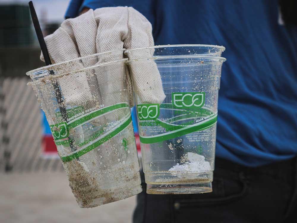 greenwashing esempi