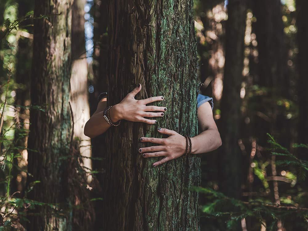proteggere la natura