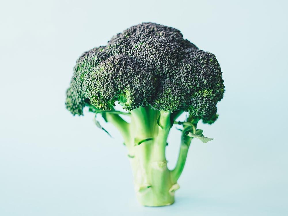 alimentazione sostenibile consigli