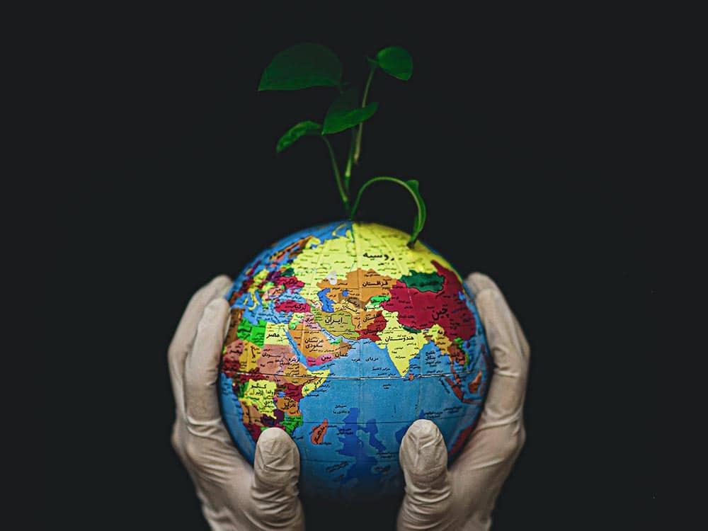 come combattere i cambiamenti climatici
