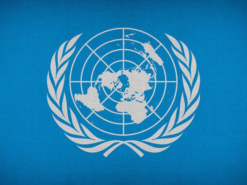 Cos'è l'Onu
